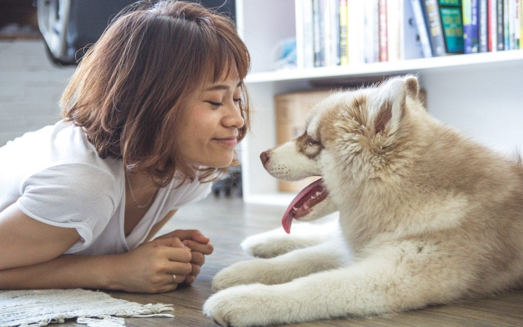 Can My Pet Get Me Sick?